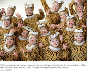 Tiger children